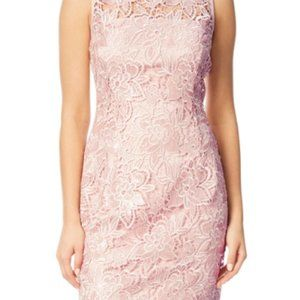 NWT Adrianna Papell Pink Lace Size 2 Dress